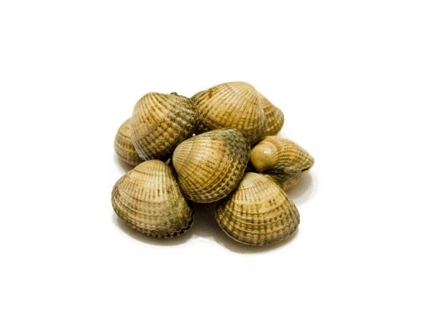 Herzmuscheln - Vongole Veraci - jetzt bei Fisch-Gruber kaufen