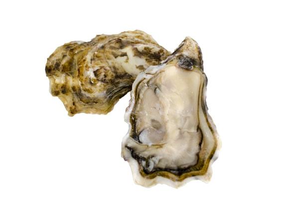 Austern Spéciales Muirgen
