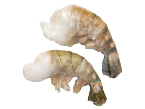 Süßwasser Riesengarnelen - jetzt bei Fisch-Gruber kaufen