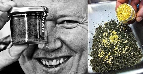 Strottarga - Kaviarpulver von Walter Grüll, wahlweise mit Blattgold (Foto: Grüll)