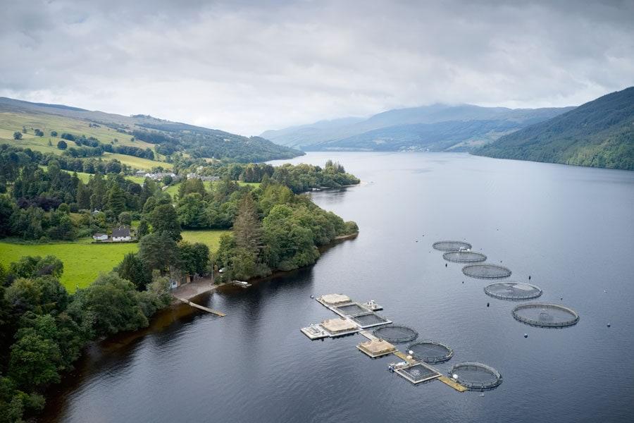 Eine Lachszucht im schottischen Meer bei Loch Tay
