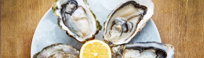 So öffnen Sie Austern richtig - Tipps von Fisch-Gruber