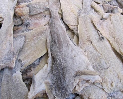 Klippfisch oder Bacalao - Eingesalzener Kabeljau