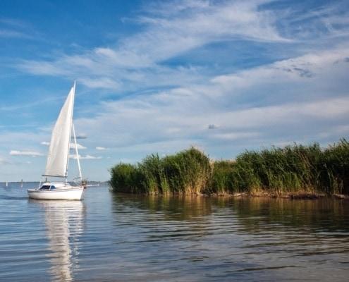 Der Neusiedlersee im Burgenland: Eine fischreiche Naturidylle
