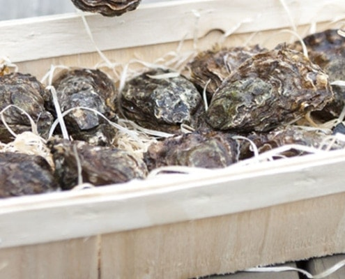 Edle Austern von Renart Boulon bei Fisch-Gruber