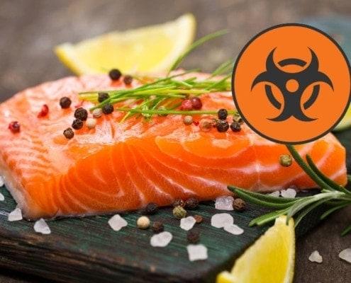 Gesundheitsrisiko Lachs? - Fisch-Gruber klärt auf!