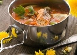 Fischbeuschelsuppe