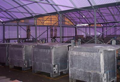 Transportcontainer für lebenden Steinbutt