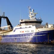 Ein Trawler - eine schwimmende Fischfabrik
