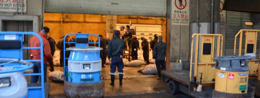 Die riesigen Thunfischauktionshallen am Tsukiji-Fischmarkt