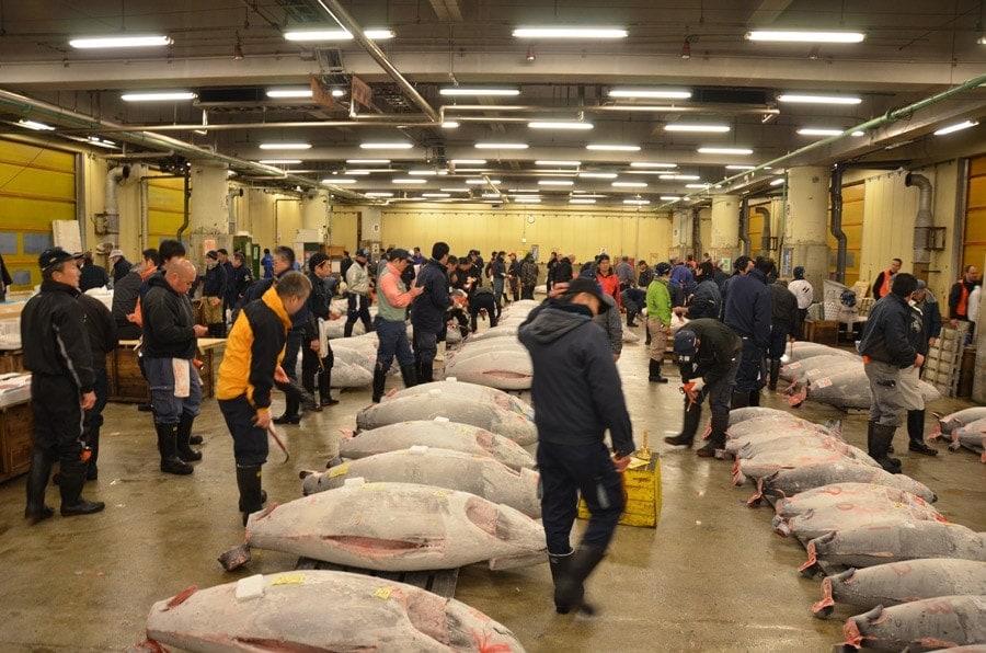 Der größte Umschlagplatz für Thunfisch weltweit