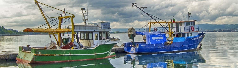 Wöchentliche Frischfischlieferungen bei Fisch-Gruber am Wiener Naschmarkt